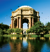 The Bay Area is a haven for musicians and artists, with many galleries, concerts, and arts events.