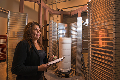 Sylvia Gomez-Vasquez in the Radiant Heat test facility, where electrically powered heat lamps are used to create intense thermal environments for component testing.