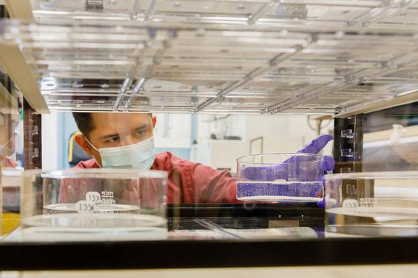 researcher testing N95-like respirator materials