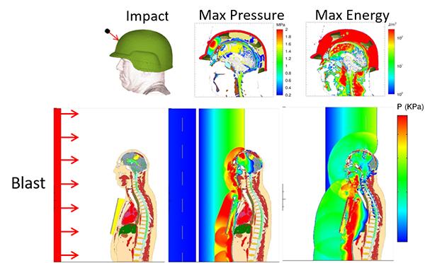 Sandia's head-neck model (top) and the head-neck-torso model (bottom) in a ballistic impact simulation