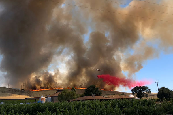 brush fire on outskirts of Sandia California property