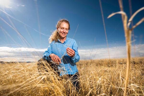 Jennifer Payne in a field of native vegitation