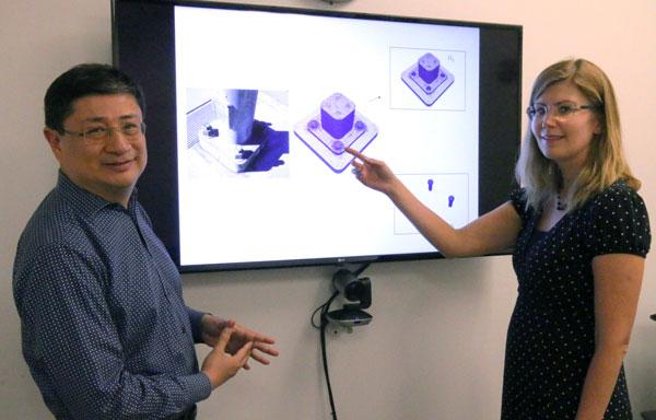 Alejandro Mota and Irina Tezaur explain their modeling method
