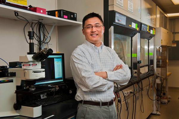 Hongyou Fan in lab