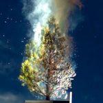 tree set on fire by solar power