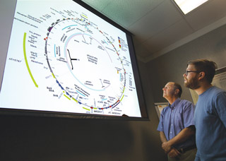 Kelly Williams, right, and Corey Hudson (both 8623) look at the mosaic pattern of one of the Klebsiella pneumoniae plasmids and discuss mechanisms that mobilize resistance genes.(Photo by Dino Vournas)